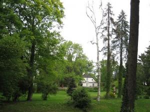 park-zelazowa-wola
